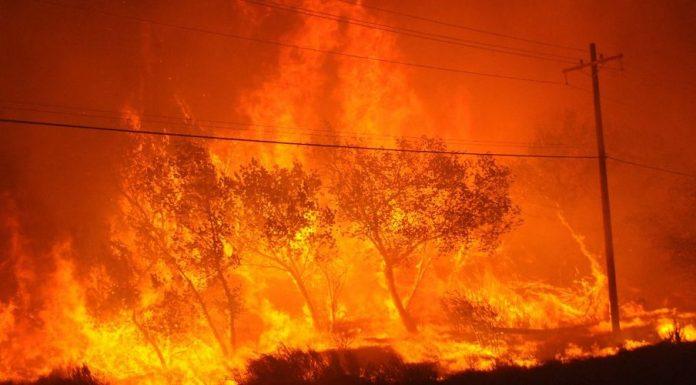 Φλέγονται οι ΗΠΑ: Πάνω από 100 πυρκαγιές σε όλη την χώρα